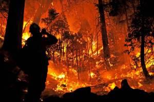 150620-calif-wildfires-mn-02_e01c257edb253258b0bc65ad87360580.nbcnews-ux-2880-1000