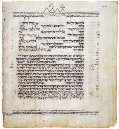 codex.png